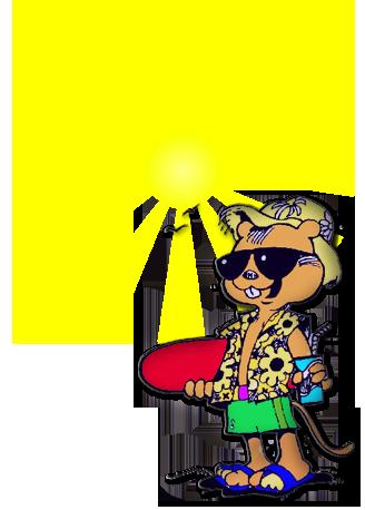 logo_zomerspelen-large